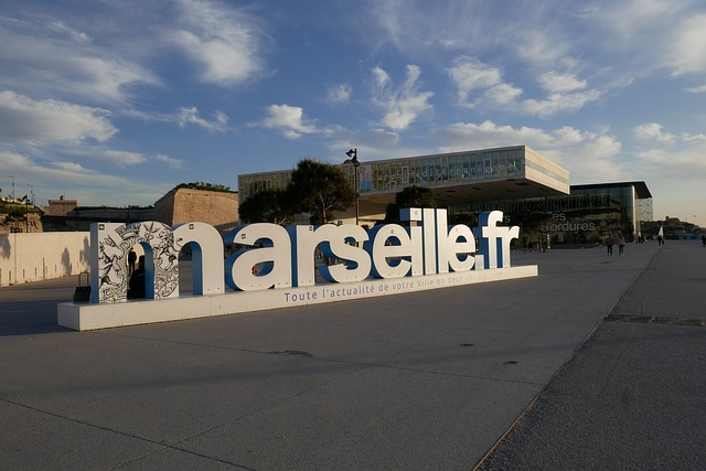 fomration ms project marseille